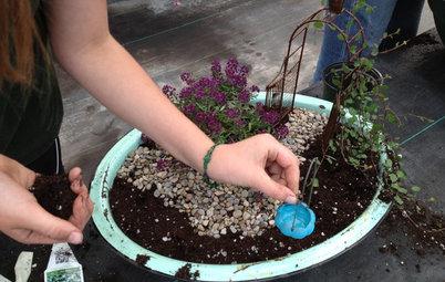 Gardening Fun: Plant a Fairy Garden