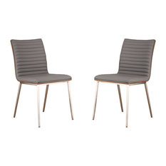 Cafe Brushed Stainless Steel Dining Chairs With Walnut Back, Set of 2, Gray