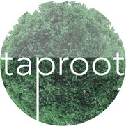 Taproot Studio's photo