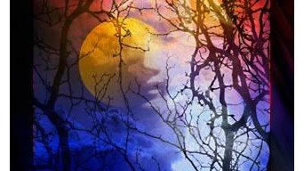 Lunar Facade