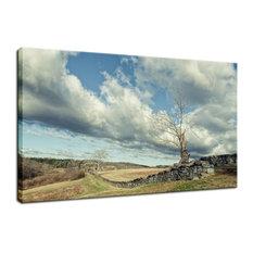 """Dead Tree and Stone Wall"" Rural Landscape Photo Fine Art Canvas Wall Art Print,"