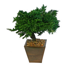 forever green art preserved traditional bonsai artificial plants and trees