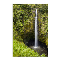 'Akaka Falls' Canvas Art by Chris Moyer