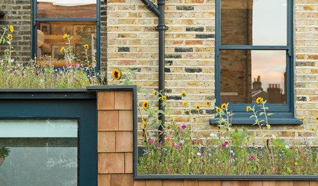 How to Create a Wildlife-friendly Garden in Autumn