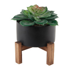 Resin Succulent in Black Ceramic Pot With Stand
