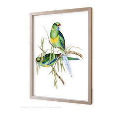 - signarture ringneck parrot 3D framed fine art print - Fine Art Prints