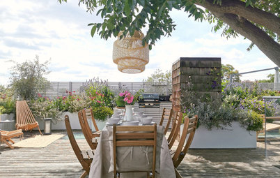 Garden Tour: A Bare Roof Terrace Becomes a Pretty, Sociable Space