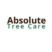 Foto de Absolute Tree Care