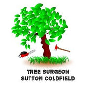 Tree Surgeon Sutton Coldfield's photo