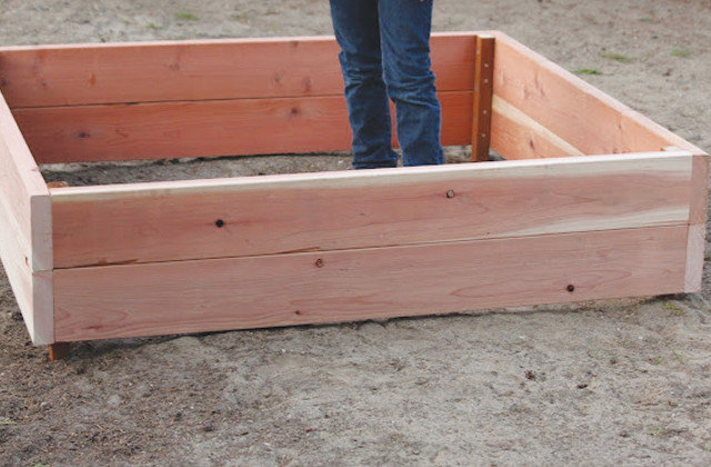 Garden DIY Build a Raised Bed to Elevate Your Garden