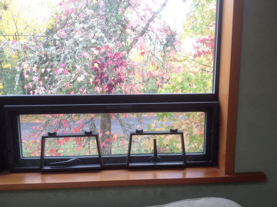 Douglas Fir window trim