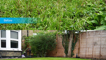 Garden Clearance Project in Basingstoke
