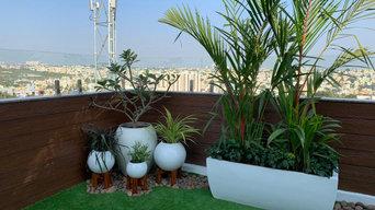 Terrace view Balcony Garden