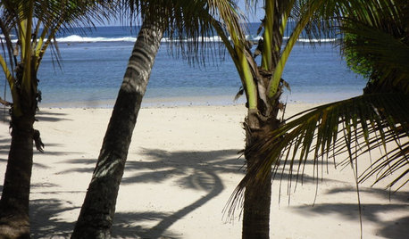 Travel Takeaways: Design Inspiration From the South Pacific