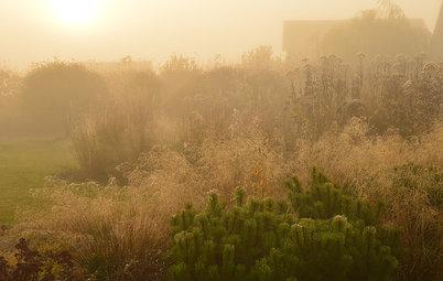 Houzz Белоруссия: Сад в тумане