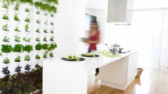 Krydderurter i køkkenet året rundt