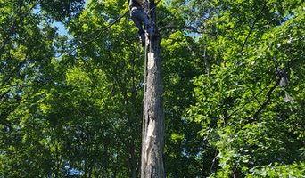 Tree Removal & Trimming project