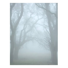 "MISTS I: Photography on Canvas, 38""x52"""