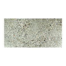 """Milenio Porcelain Floor and Wall Tile, Doce, Set of 6, 11.88""""x23.88"""""""