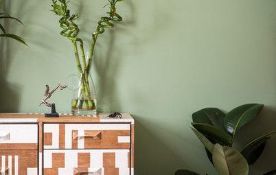 Grün gewinnt: Warum Jade, Tanne & Co. die perfekte Wandfarbe sind