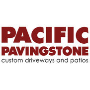 Pacific Pavingstone's photo