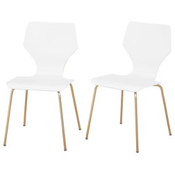 Contemporary Dining Chairs by TMS