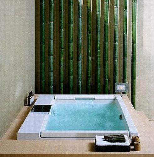 Toto   Toto Neorest Bathtub   Bathtubs