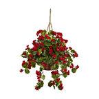 Geranium Hanging Basket in Red
