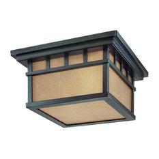 Dolan Designs 9119-68 Barton Outdoor Ceiling Light In Winchester