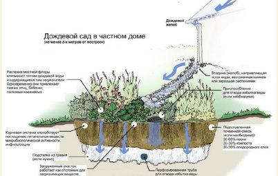 Как правильно: Отвести лишнюю воду с участка