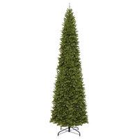 16' North Valley Spruce Pencil Slim Tree