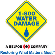 1-800 WATER DAMAGE of Greenville's photo