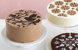 Cake Stencils, Recipes And How-To's