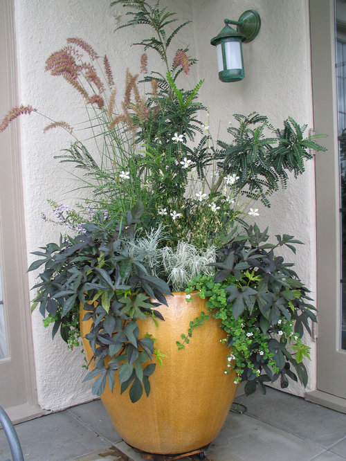 Large container planting ideas ideas, pictures, remodel and decor