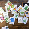 Order Seeds! And 6 More Ways to Make the Most of This Weekend