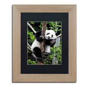 Philippe Hugonnard Panda Iii Art Contemporary Photographs By Trademark Global