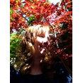 KL Designs Residential Landscape Planning LLC's profile photo