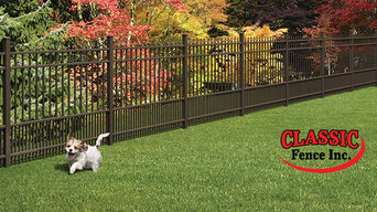 Puppy Fence