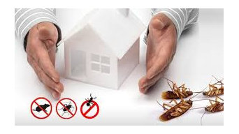 24×7 Hours Residential Pest Control Service