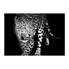 """Leopard"" Black and White Glass Print Glass Print, 100x70 cm"