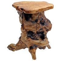 Unique Root End Table