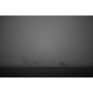 Foggy Field Black and White Fine Art Print, 75x50 cm
