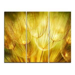 """Soft Yellow Dandelion Flowers"" Photography Wall Art, 3 Panels, 36""x28"""