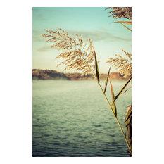 """""""Golden Dreams"""" Nature Photography, Botanical Unframed Wall Art Print, 11""""x14"""""""