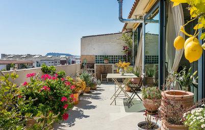 植物とオーシャンビューを楽しむ。モロッコの香りあふれるスペインの部屋