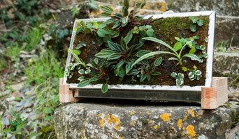 BudDIY - Il giardino verticale da tavolo
