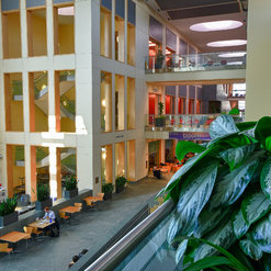 Elegant Botanicus Interior Landscaping For Cornell University Duffield Hall