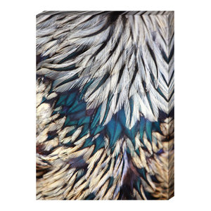 EMDE Blue Cameo Feathers Painting, 70x50 cm