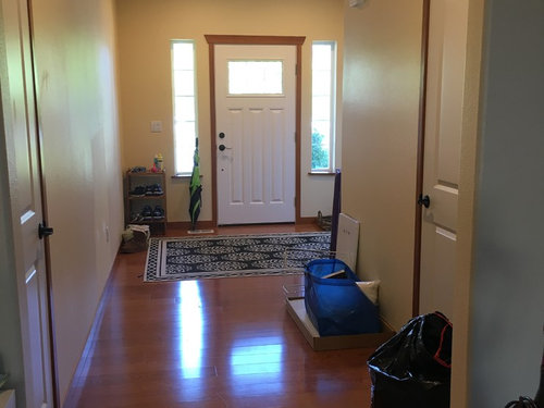 Help With My Large Odd Shaped Foyer Please