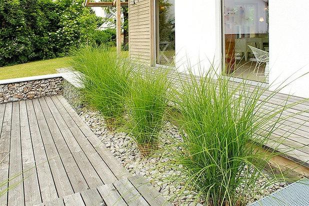 Modern  by Schuler Garten & Landschaftsbau